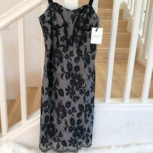 Jill Stuart Collection Black lace bustier dress